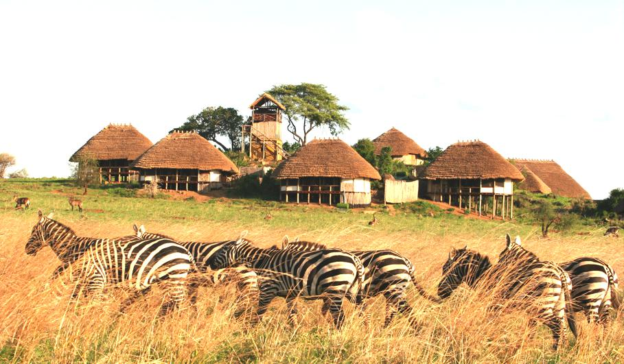 Luxury-Apoka-Lodge-Uganda 1