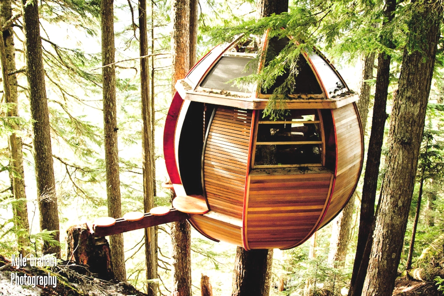 Contemporary-Treehouse-Canada-00