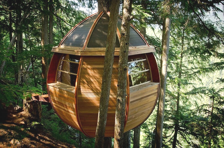 Contemporary-Treehouse-Canada-03