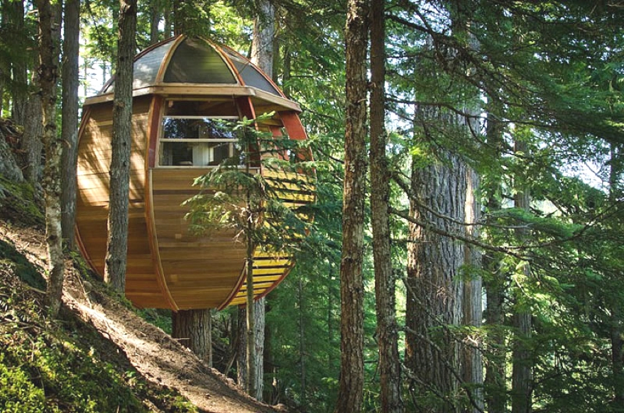Contemporary-Treehouse-Canada-04