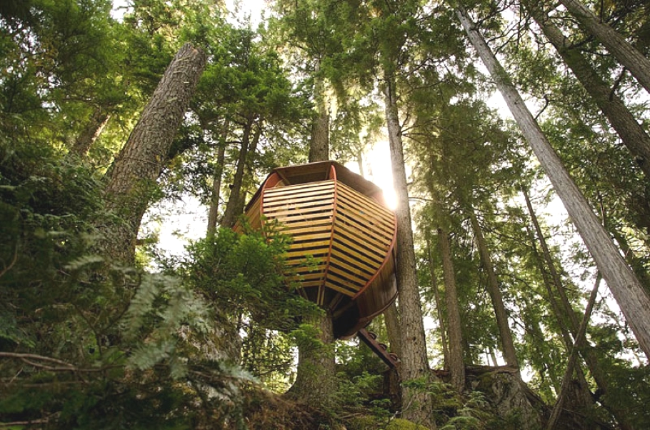Contemporary-Treehouse-Canada-05