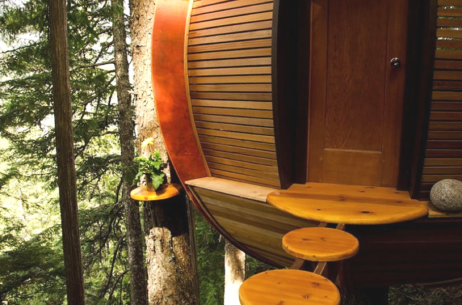 Contemporary-Treehouse-Canada-08