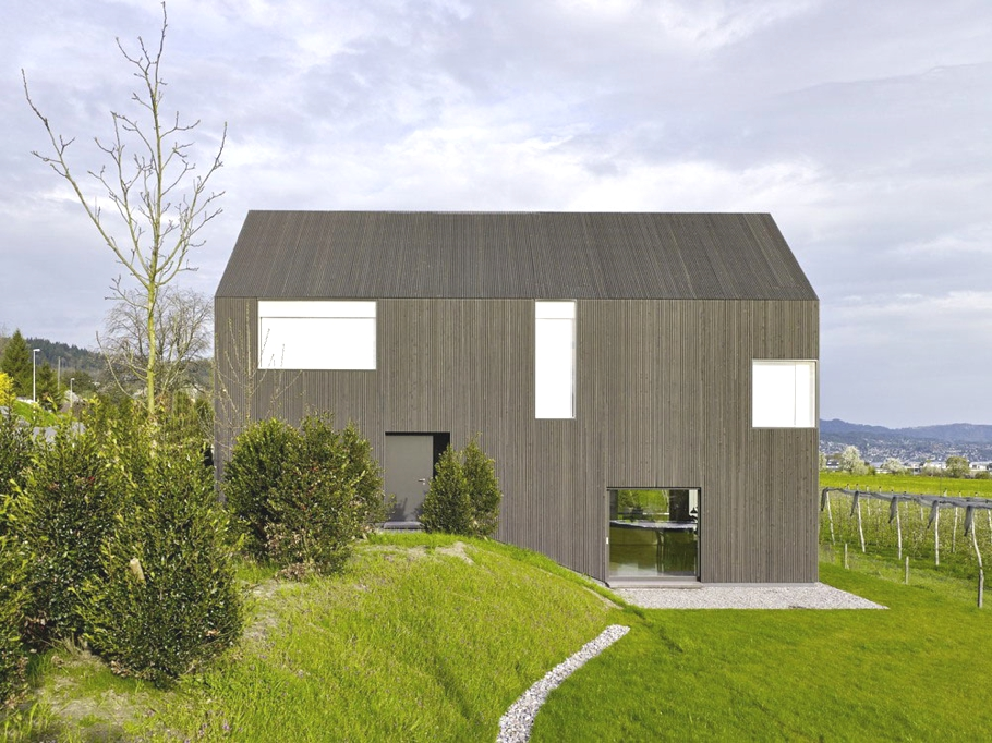 Contemporary-Homes-Switzerland-Adelto-00