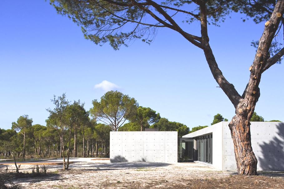 Contemporary-Homes-Portugal-Adelto-05