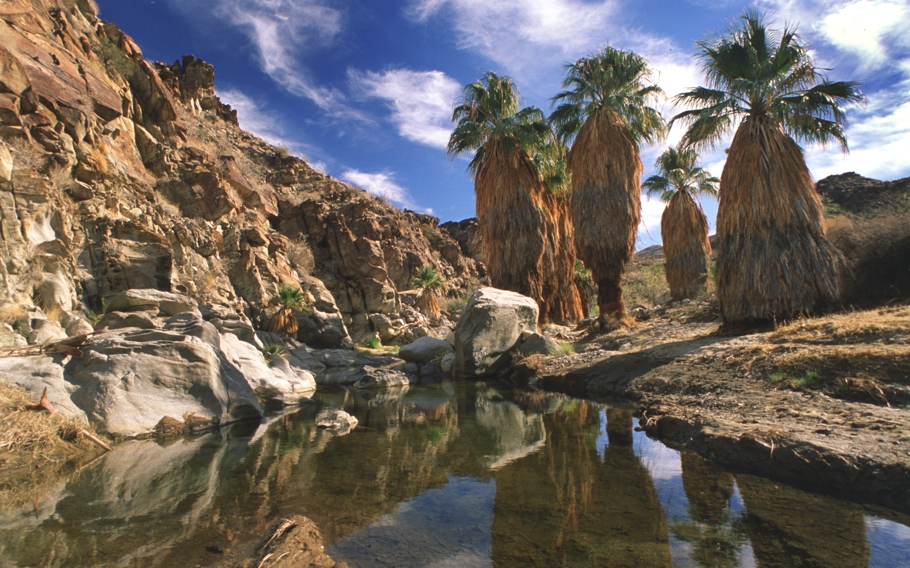 reasons-to-visit-palm-springs-california-adelto-06